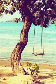 escape.  I would love to be on that swing right about now ;)