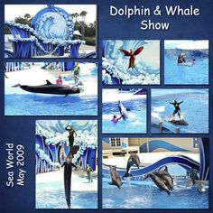 Dolphin & Whale Show - MouseScrappers - Disney Scrapbooking Gallery