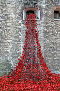 https://flic.kr/p/pKBVrX | Tower of London on Armistice Day | 'Blood Swept Lands and Seas of Red' installation of 888,246 red ceramic poppies to commemorate the centenary of World War 1. The final poppy was planted on Armistice Day. The Weeping Window.
