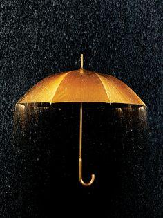 Gold Photography | Gold Gold Umbrella + Rain | Conceptual Still Life – Annabelle ...