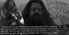 Hagrid :( You know, there are deaths in HP that are difficult to handle (Snape, Lupin, Dobby, Fred), but if Hagrid had eve died, that would have been it for me. I would NOT have been able to handle that AT ALL.