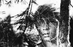El Acorazado Cinéfilo - Le Cuirassé Cinéphile: Mis películas favoritas (18) - Filosofía del cine:...