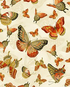 Sanctuary II - Butterflies Rose by Kona Bay Cotton Fabric Yardage Textile Patterns, Textiles, Print Patterns, 12 Roses, Japanese Quilts, Japanese Kimono, Art Nouveau, Green Butterfly, Butterfly Print