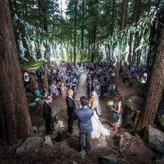 Towering cedars and Douglas firs created a magical backdrop for this rustic-chic celebration in the woods. Photo by Blake Jorgenson.