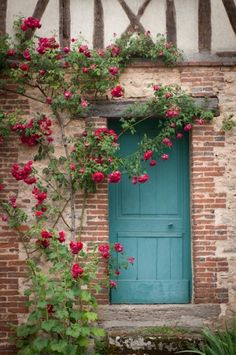 Climbing roses on an old home.  love the turquoise blue door.  inviting and homey