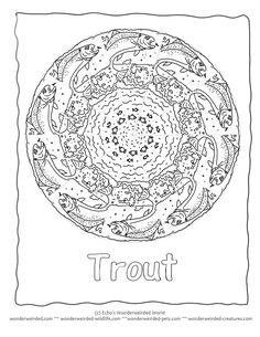 rainbow trout coloring page - 1000 images about coloring pages on pinterest trout
