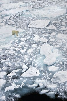 Global Warming = Melting Ice