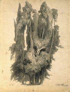 Johann Wilhelm Schirmer (German, 1807-1863), Cypresses in the Park at Villa d'Este in Tivoli, 1839-40, Brush with grey and green Indian ink, Düsseldorf, Museum Kunstpalast