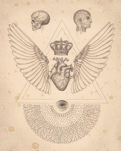 INSIDE OUTSIDE.The science and #anatomy inspired art of Daniel ...