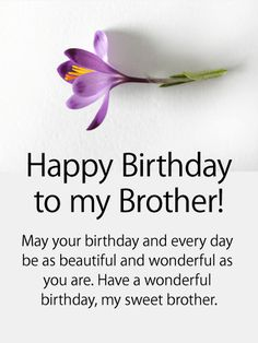 Purple Flower Happy Birthday Card For Brother