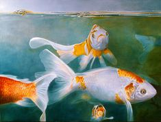 Vissen - painting by Tjalf Sparnaay Tjalf Sparnaay, Hyperrealistic Art, Realistic Paintings, Oil Painters, Dutch Artists, Fish, Illustration, Animals, Toast