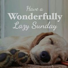 Weekend Quotes : Happy Wonderful Lazy Sunday Quote, perfect for rainy days, dog and puppy lovers,. - Quotes Sayings Lazy Sunday Quotes, Sunday Morning Quotes, Happy Sunday Morning, Sunday Humor, Happy Weekend Quotes, Morning Quotes For Friends, Weekday Quotes, Rainy Day Quotes, Morning Messages