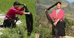 Entérate sobre el secreto a base de arroz que utilizan un grupo de mujeres en la China para lucir un cabello largo, hermoso y saludable.