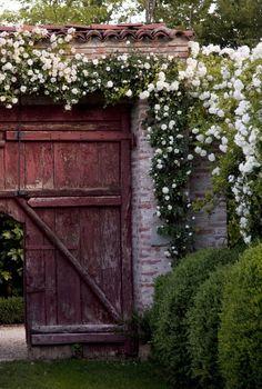 bloemen voor aan tuinhuis