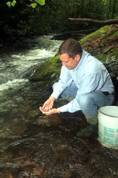 AEP Grant Helps Restore Brook Trout in Virginia's Little Tumbling Creek