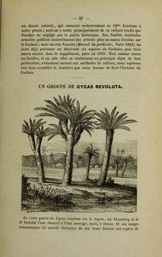 La Belgique horticole : Annales de botanique et...