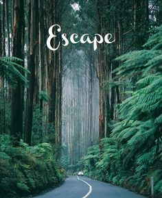 escape words-typo-graphics-and-giggles