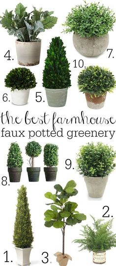 Potted Fiddle Leaf Trees The Best farmhouse faux potted greenery - A great source for faux potted plants! A must pin!The Best farmhouse faux potted greenery - A great source for faux potted plants! A must pin! Vintage Farmhouse, Farmhouse Homes, Farmhouse Design, Modern Farmhouse, Farmhouse Style Decorating, Vintage Kitchen, Farmhouse Office, Farmhouse Garden, French Farmhouse
