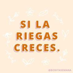 🌿 Lo bueno de cometer un error es el aprendizaje que viene después ..............#vsco #bonitasemana #felizlunes #lunes #mood #frase #frases #fraseinspiradora #inspiración #motivación #cdmx #frasemotivacional #iniciodesemana #newsletter #monterrey #mexico #venezuela #medellin #colombia #sansalvador #guatemala #fun #thehappynow #plantas #guadalajara #queretaro #mexicali #quote Positive Words, Positive Vibes, Positive Quotes, Inspirational Phrases, Motivational Phrases, Latinas Quotes, Baddie Quotes, Best Quotes, Love Quotes