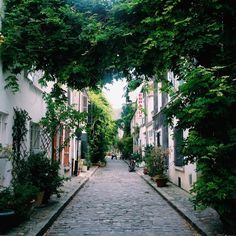 The Rue des Thermopyles is a little hidden street in the 14th arrondissement. Whenever I feel like getting a real breath of fresh air, this is where I go.