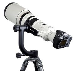 A layman's guide to gimbal heads. A gimbal head is a device that keeps the weight of your camera and lens centralised when shooting with large, heavy telephoto lenses.