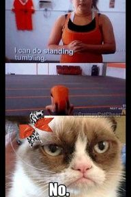 Grumpy cat and cheer perfection haha love it