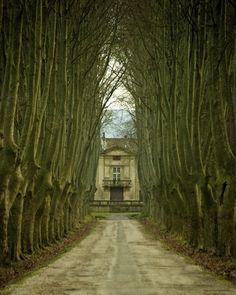 St Remy En Provence by Martin De La Torre