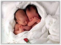 Google Image Result for http://twinpossible.com/wp-content/uploads/2011/07/newborn-twins-turned-toddler-twins.jpg