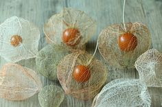 Texture Board, Chinese Lanterns, Dried Flowers, Handicraft, Diy And Crafts, Flora, Kawaii, Drawings, Creative