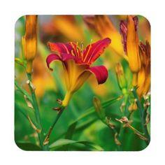 Simple Pleasures Hard Plastic Coasters with cork back.  Set of 6. #coasters #flowers #garden