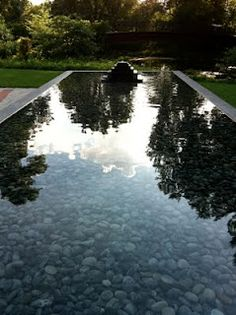 reflecting pool at Olbrich Gardens Madison, WI