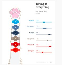 Post smarter, right meow! Just like with everything else In life, timing on media is everything. #infographic via SumAll.com #cats #marketing #advertising #socialmedia