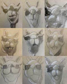 """Camel Heads: How to draw a camel's face. You start with the almost olympic cycles for nose, eyes, mouth and chin. The rest develops almost automatically. This 20 minutes """"drawing dictation"""" produces a nice camel head carpet.  Kamele   Kunst im Schulhaus Rosenau"""