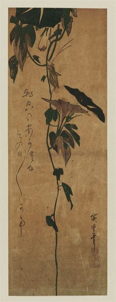 Grasshopper and Morning Glories朝顔にきりぎりすJapanese, Edo periodArtist Utagawa Hiroshige I, Japanese, 1797–1858