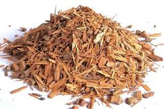 One of Best Herbs For Maintaining Women's Hormonal Balance is Catuaba Bark