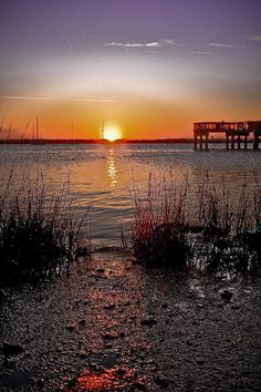 ✮ Sunrise along the Indian River in Florida
