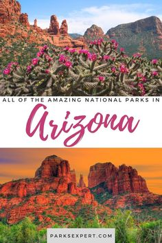 Did you know there are 22 national parks in Arizona? Click here for the list, including things to do and how to get to each of the Arizona national parks. Arizona National Parks, Grand Canyon National Park, Usa Travel, Travel Tips, Montezuma Castle National Monument, Lake Mead, Park Service, Outdoor Woman, Historical Sites