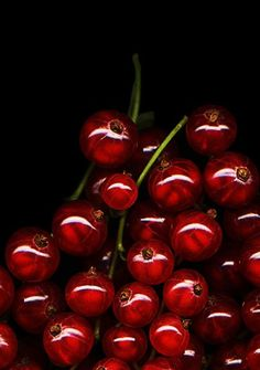 Red currants- Rote Johannisbeeren, reminds me so of Germany! We had Johannisbeeren growing in our back yard :o) Fruit And Veg, Fruits And Veggies, Fresh Fruit, Photo Fruit, My Favorite Color, My Favorite Things, Grenade, Think Food, Shades Of Red
