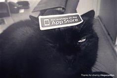 """""""生活的应用程序"""" There Isn't an App for Everything  http://notonappstore.com/ http://notonappstore.tictail.com/ https://www.dropbox.com/s/a27yl78389fyyg2/notonappstore.pdf"""