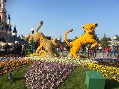 Disney viert de lente tot 31 mei #disneylandparijs