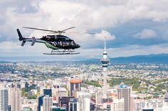 Nothing found for Tours Auckland Scenic Helicopter Flights Inflite Great Places, Beautiful Places, Helicopters, Auckland, How To Introduce Yourself, New Zealand, Islands, Highlights, Places To Visit