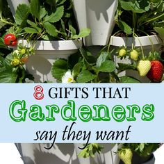 8 gifts that gardeners actually want for christmas