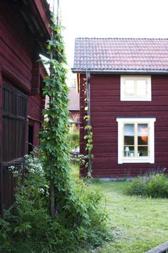 The plum cottage Swedish Decor, Scandinavian Style, Country Life, Country Living, Red Houses, Purple Houses, Swedish House, Swedish Cottage, Prune
