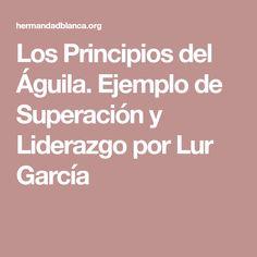 Los Principios del Águila. Ejemplo de Superación y Liderazgo por Lur García