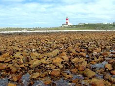 Cape Agulhas is a rocky headland in the Western Cape, South Africa. It is the geographic southern tip of Africa and the official dividing point between the Atlantic and Indian Oceans. Historically, the cape has been known to sailors as a major hazard on the traditional clipper route and is sometimes regarded as one of the great capes. The town of L'Agulhas is located near to the cape.