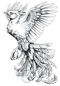 phoenix tattoo by tsf.info Black And White Phoenix Tattoo