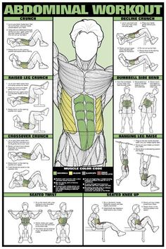 ABDOMINAL WORKOUT Fitness (Men's) Professional Wall Chart Poster -Available at…