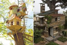 2 Treehouses