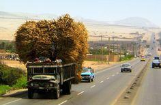 Pan-American Highway - Trujillo, Peru.
