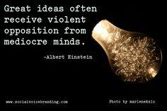 visit www.socialvoic